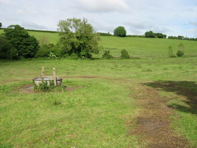 Water trough in cow field.