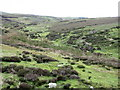 NY7362 : The valley of Howden Burn by Mike Quinn