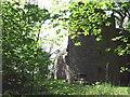 NO1301 : Loch Leven Castle by Simon Johnston