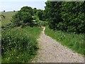 TG0822 : Marriott's Way at B1145 Crossing by Ian Robertson