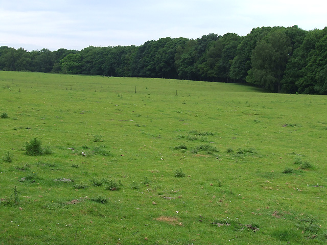 Grazing Land and Thrift Coppice, Linley Green, Shropshire