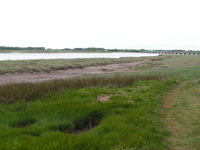 Salt Marsh by the Esk