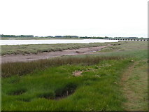 SD0994 : Salt Marsh by the Esk by N Chadwick