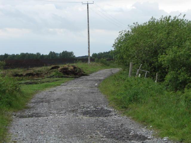 Old bog road