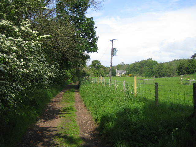 Bridleway near Harbottle
