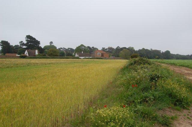 Field near Stone House, Aldringham