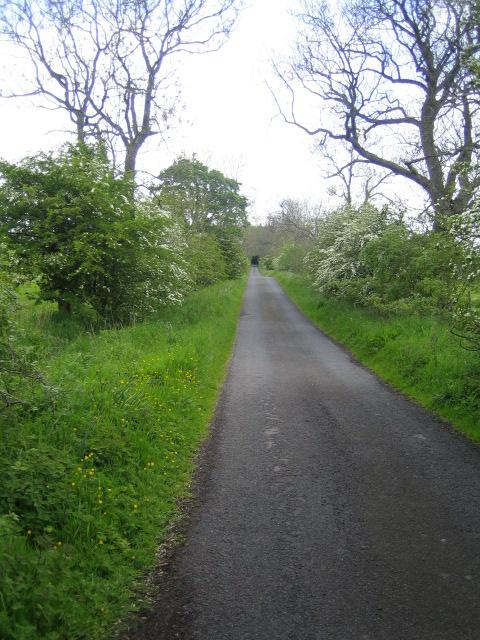Lane near Well House Farm, Harbottle