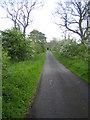 NT9405 : Lane near Well House Farm, Harbottle by Andy Gryce