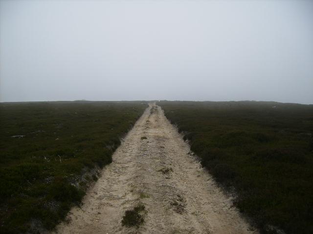 Track over Gisborough Moor