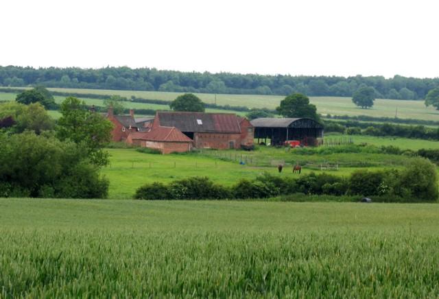 Dilliner Wood Farm