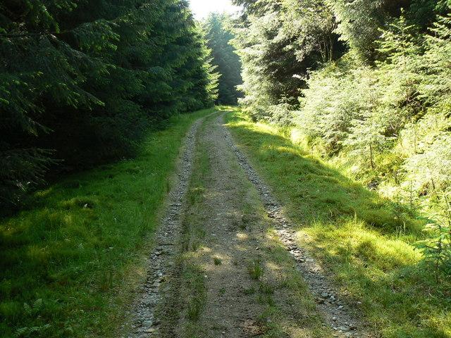 Blairmore Farm - Kilmun Track