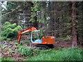 SE2000 : Langsett Woods by John Fielding
