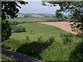 SX3278 : View across lane from Trebullett by Derek Harper