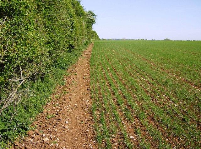 Bridleway from Duntisbourne Rouse to Woodmancote