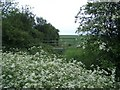 TL1675 : Bridleway Bridge SW of Alconbury Weston by Nigel Stickells
