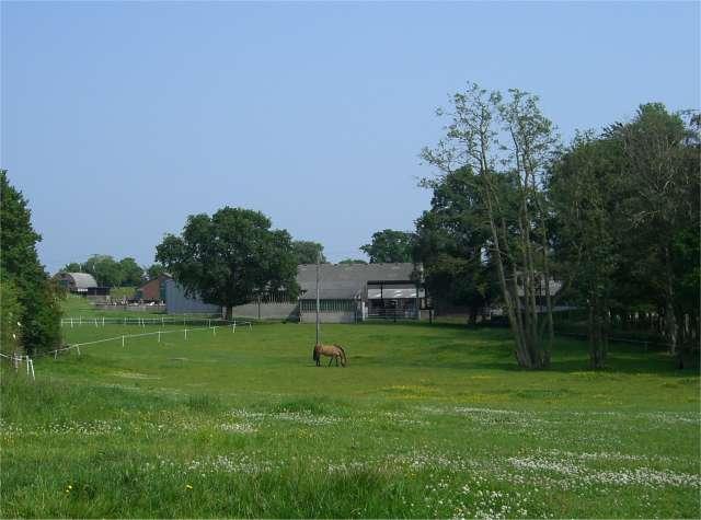 Bridge House Farm
