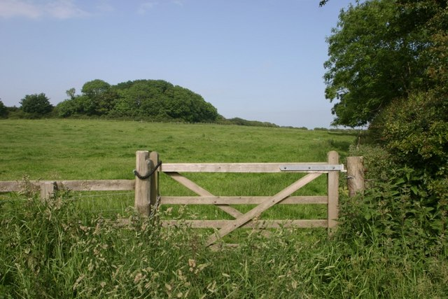 Gate Into Pasture