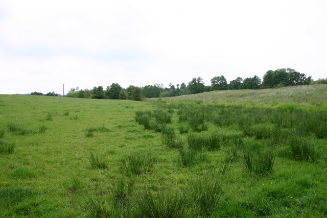 Fields near to Aqualate Mere