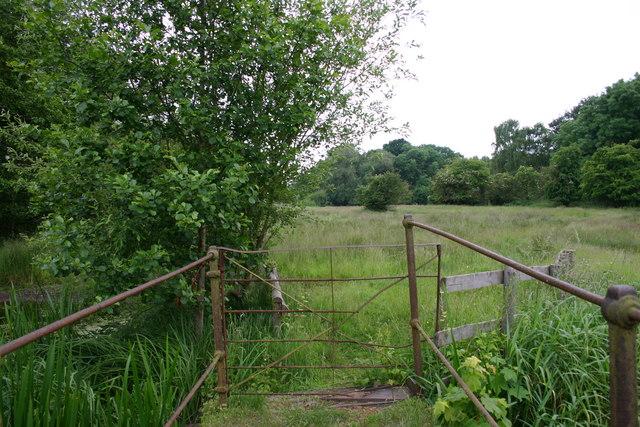 Footbridge Over a Brook, Take 2