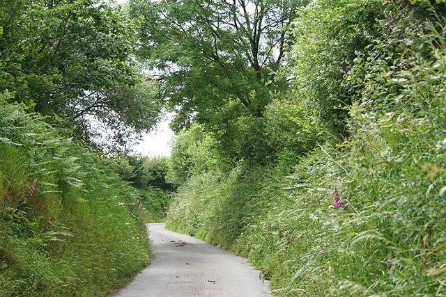 North Molton: lane near Coombeshead