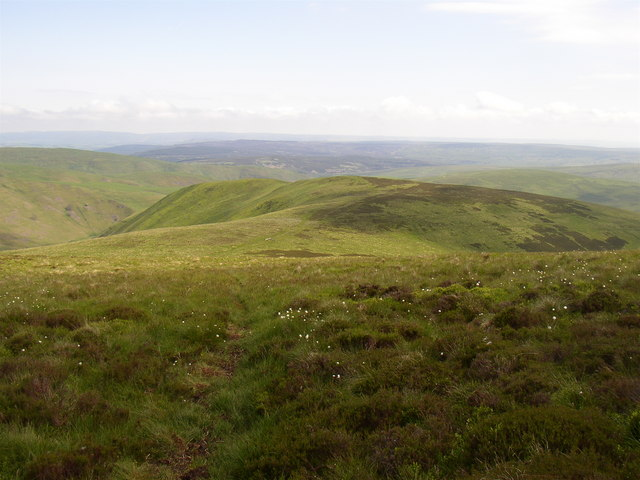 Path on the southern flank of Shillhope Law