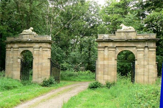Cat Gates