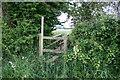 SJ8830 : The Hidden Footbridge by Stephen Pearce