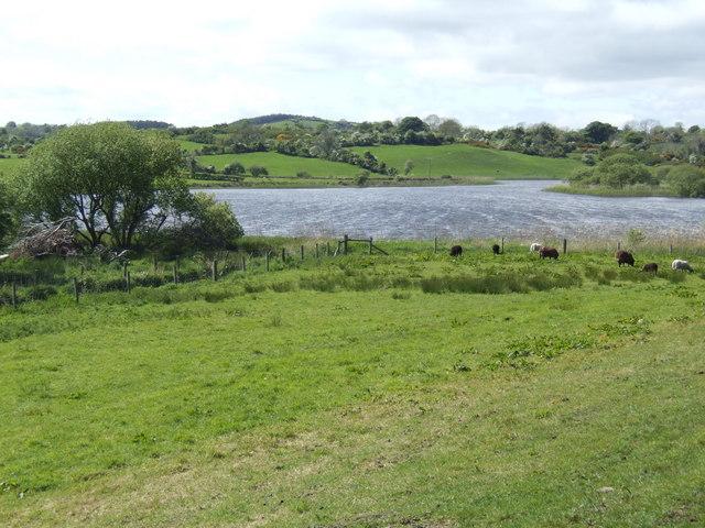 The Long Lough