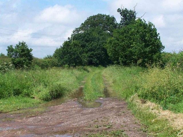 Footpath From Nursery Farm
