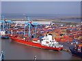 SJ3296 : Royal Seaforth Container Terminal by Carl Davies