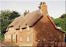 SZ0795 : East Howe: Primrose Cottage by Chris Downer