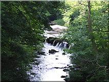 SK1985 : River Derwent Looking North from Yorkshire Bridge by Siobhan Brennan-Raymond