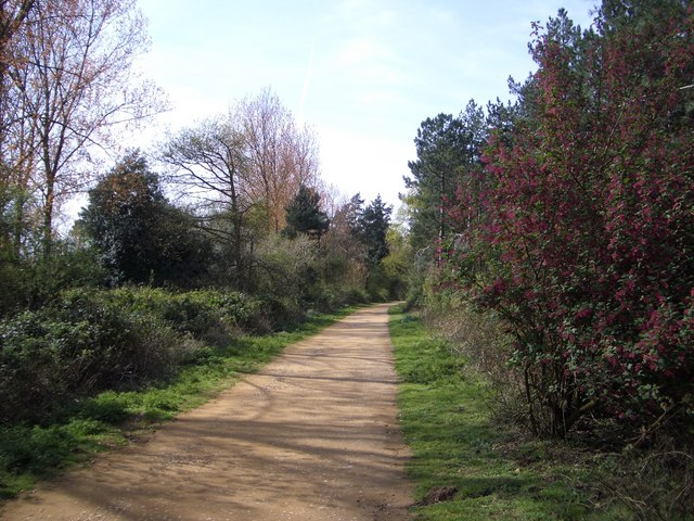 Trackway West of Holkham Gap