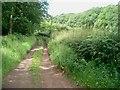 SO9272 : Lane to Highwood Cottage by Trevor Rickard