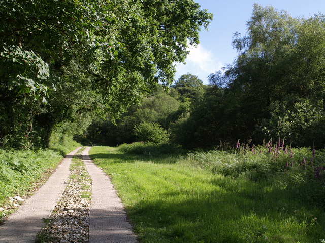 Hawkchurch Footpath 16