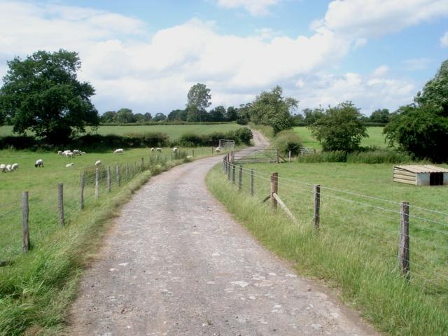 Track near Elms Farm