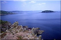 SX2551 : Looe Island from the coast path by Trevor Rickard