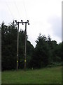 ST6562 : Electricity lines entering Common Wood by Virginia Knight