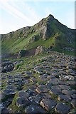 C9444 : Giant's Causeway by Anne Burgess