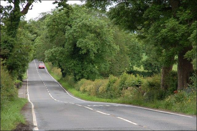 The Ballysallagh Road near Bangor