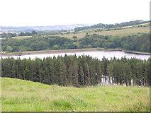 SD7217 : End of Turton and Entwistle Reservoir by liz dawson