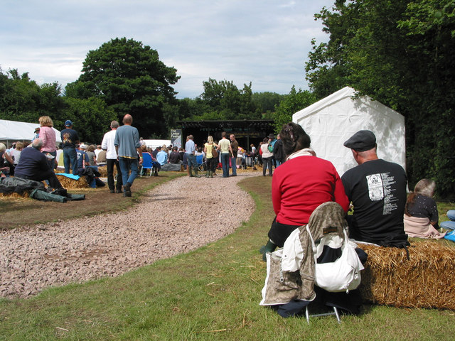 Crowd gathers for the Linton Festival