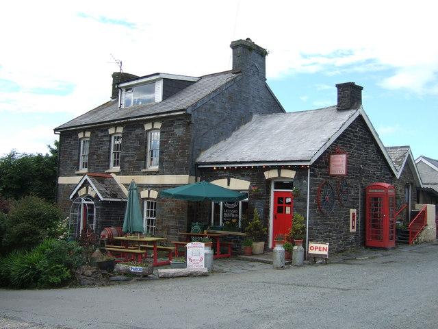 The Old Post Office Rosebush