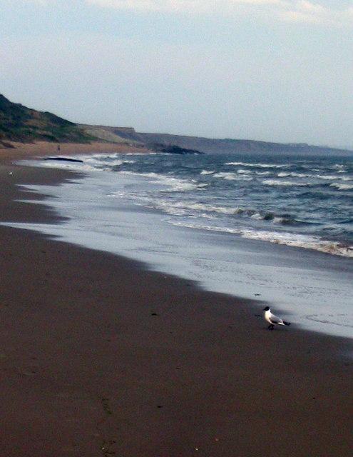 Beach at Barton-on-Sea