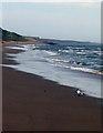 SZ2293 : Beach at Barton-on-Sea by Stephen Williams