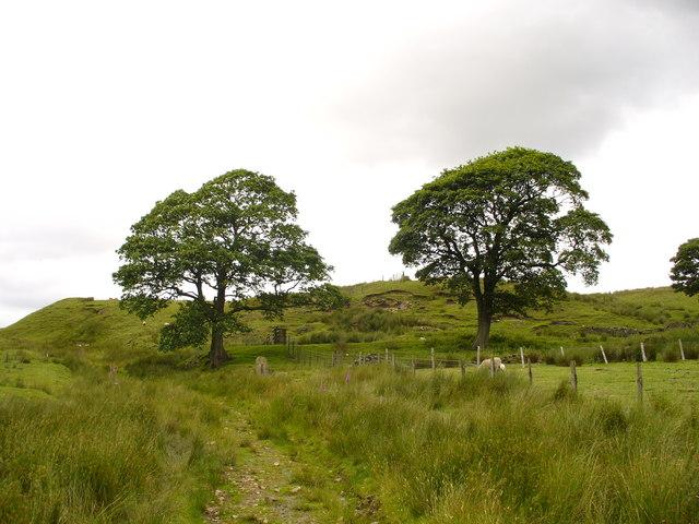 The site of Priestentax Farm