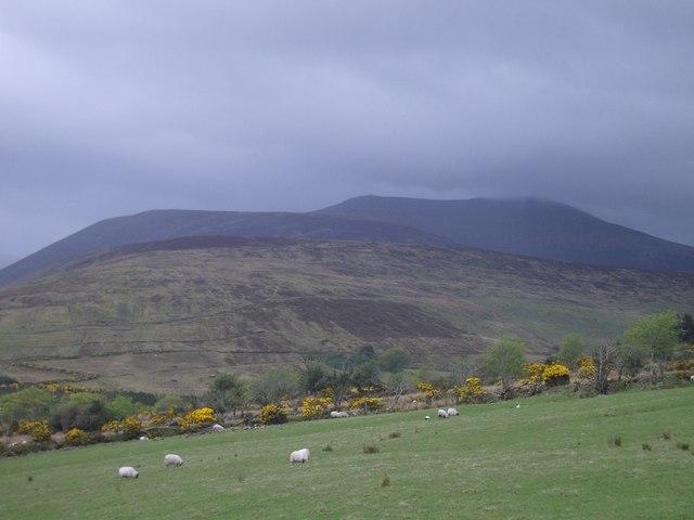 In the Derrynasaggart Mountains, between Killarney & Macroom
