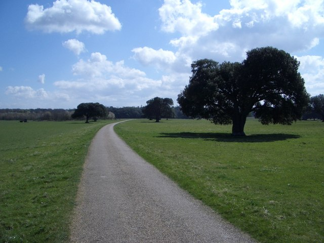 The Golden Gates Driveway in Holkham Park