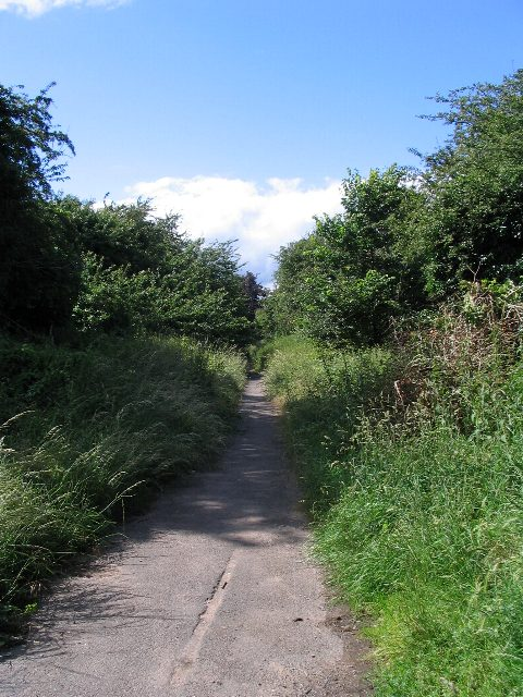 Baginton Road remnant
