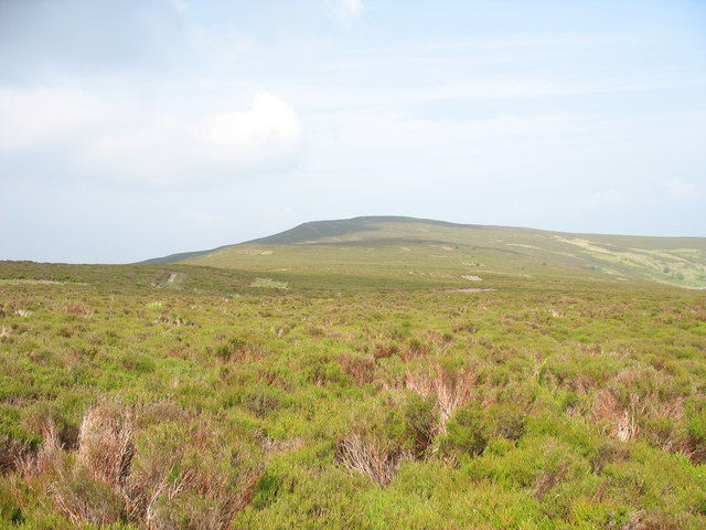 View across the upland heath towards Moel Fferna